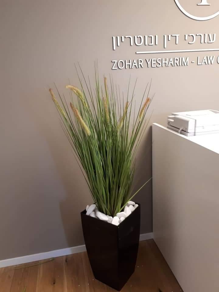 צמחיה מלאכותית למשרדים