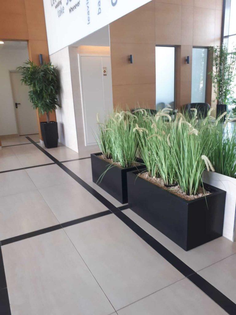 צמחיה מלאכותית לבניין