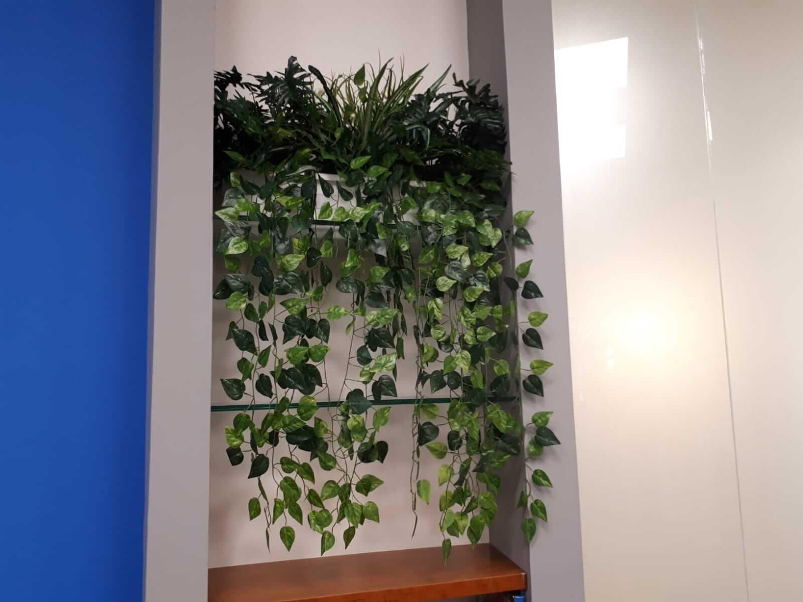 קיר צמחיה מלאכותית
