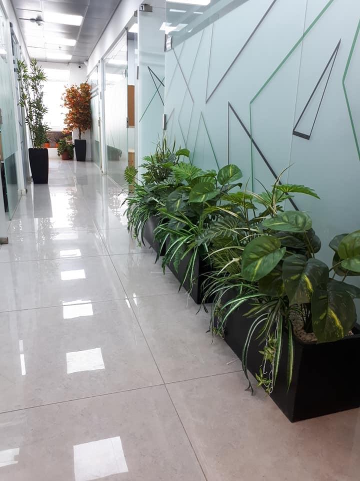אדניות משולבות עם קוקטייל צמחים ונשפכים