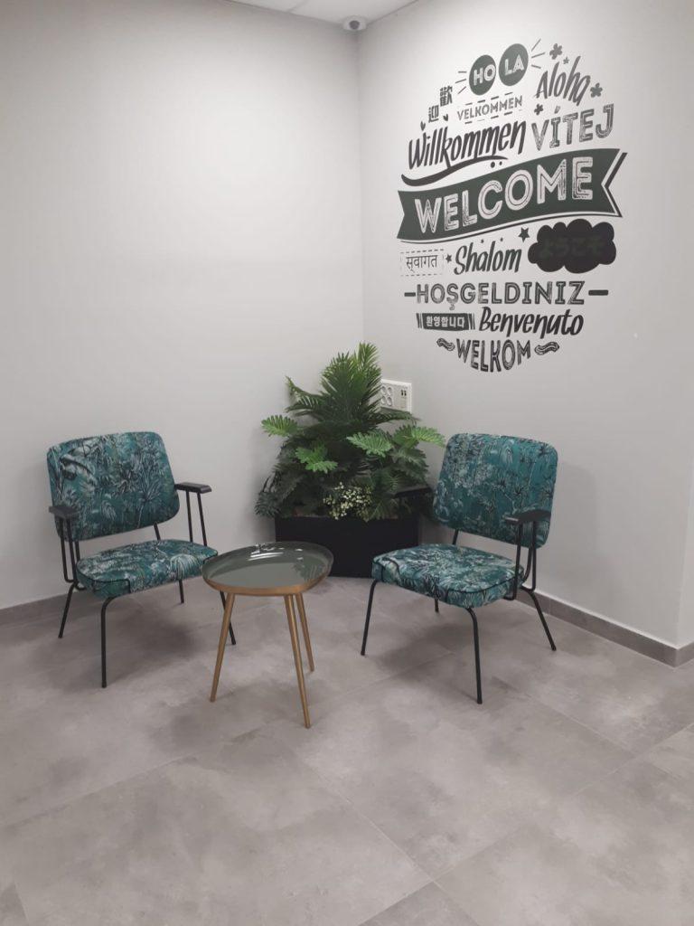 אדנית עם קוקטייל צמחים מרהיב בפינת ישיבה