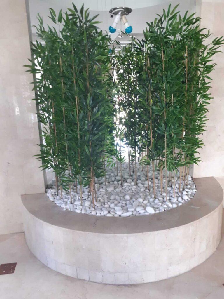 במבוקים צמחיה מלאכותית
