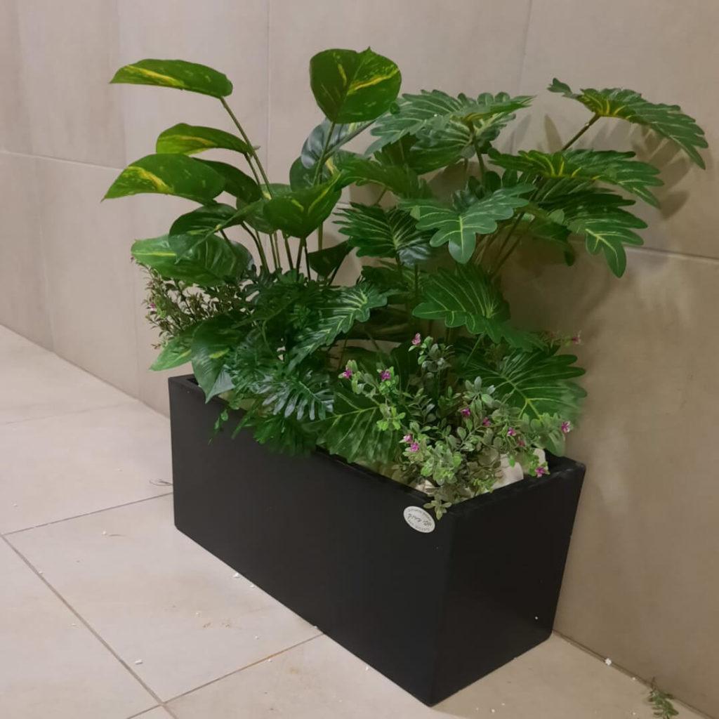 קוקטייל צמחים באדנית