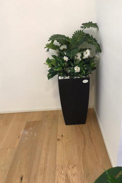 כד 56 עם קוקטייל צמחים ופרחים